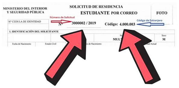 ampliacion de visa en tramite numero de solicitud de visa codigo de extranjero departamento de extranjeria y migracion chile immichile
