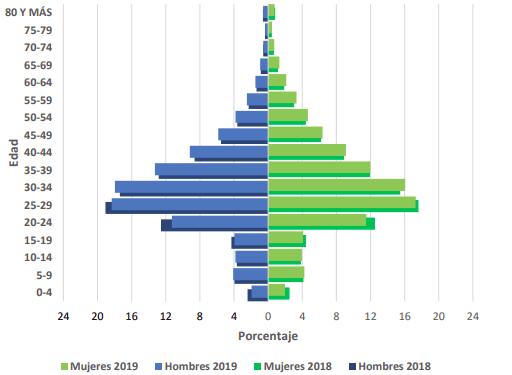 Población extranjera residente en Chile por sexo y grupo de edad estimada al 31 de diciembreaños 2018 - 2019 INE Extranjeria Chile immichile 2020
