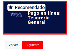 pago en linea tesoreria general de la republica tgr pago multa extranjeria migracion chile immichile