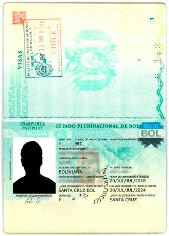 hoja de identificación de pasaporte registro de visa chile immichile pdi
