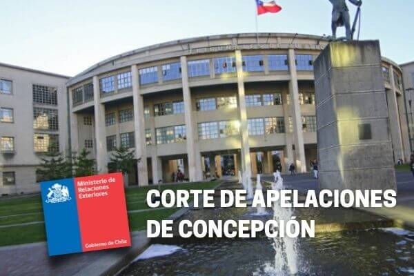 Corte de Apelaciones de Concepción acoge recurso de amparo y ordena a Consulado a reanudar tramitación de Visa de Responsabilidad Democrática immichile